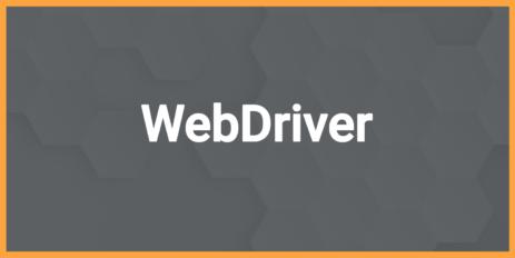 Мы команда веб-разработчиков из Калининграда WebDriver